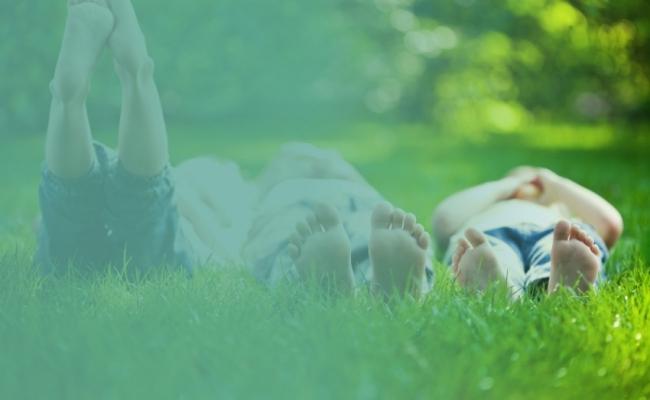 grass-family-e1440070662521